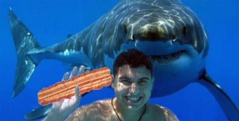 "Mossad agent Dr. Ben ""Boom-Boom"" Zonah training sharks to eat bacon and kill European tourists"