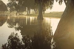 Dura Reserve