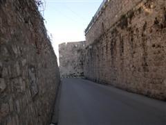 Israel_general_2007_00021__WinCE_.JPG